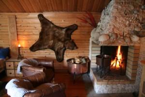Björnen som orsakade björnfrossan återfinns  numera på väggen i vår lilla timmerstuga.
