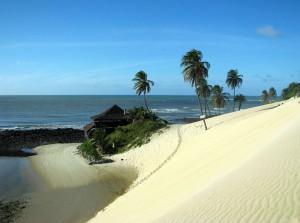 Skaplig strand i Natal.