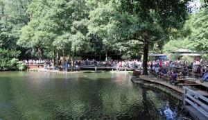 Vill du få lite motion efter maten kan du hyra en roddbåt vid Café am Neuen See.