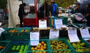 Bondens marknad i Edinburgh.