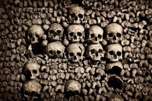 Något för de som är fascinerade av skelett och dödskallar.