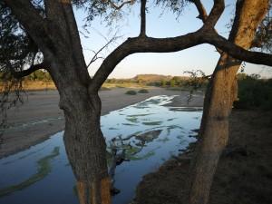 Limpopofloden.