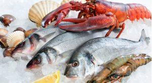 På Pecheria finns massor av olika sorters fisk och skaldjur.