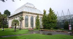 Även skottarna vet hur man ska bygga orangerier och växthus, det kan du se på Royal Botanical Garden.