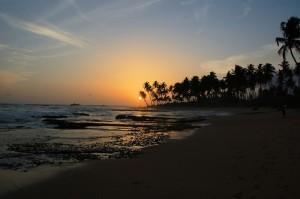 Solnedgång vid sandstrand med palmer i Galle i södra Sri Lanka.